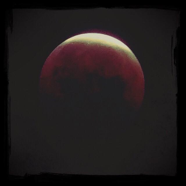 【日々のこと】月食、いかがでした?:復習しましょう?!