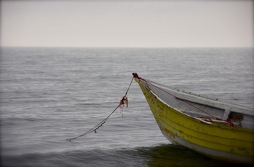 【本・映画】彼女が消えた浜辺:イランの映画、初めて見ました