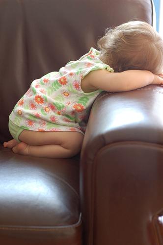【日々のこと】+20分の睡眠で!:仕事の効率が3倍に?!