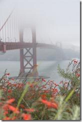 霧のサンフランシスコ