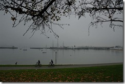 SF in Autumn 2