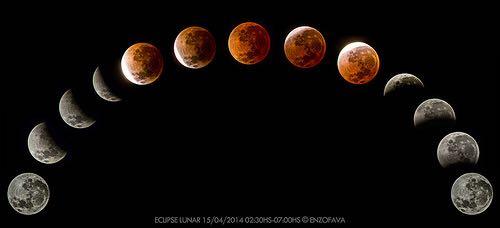 【日々のこと】10月8日は月食、:財布を振る?それは違うような…