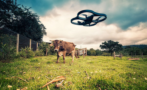 【お気に入り】Drone来た〜!:ミニDrone Parrot届きました!