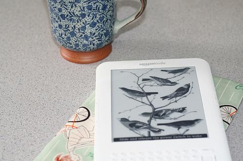 【Kindle】Kindleでハイライト:ハイライトが表示されない人はアカウントをチェック