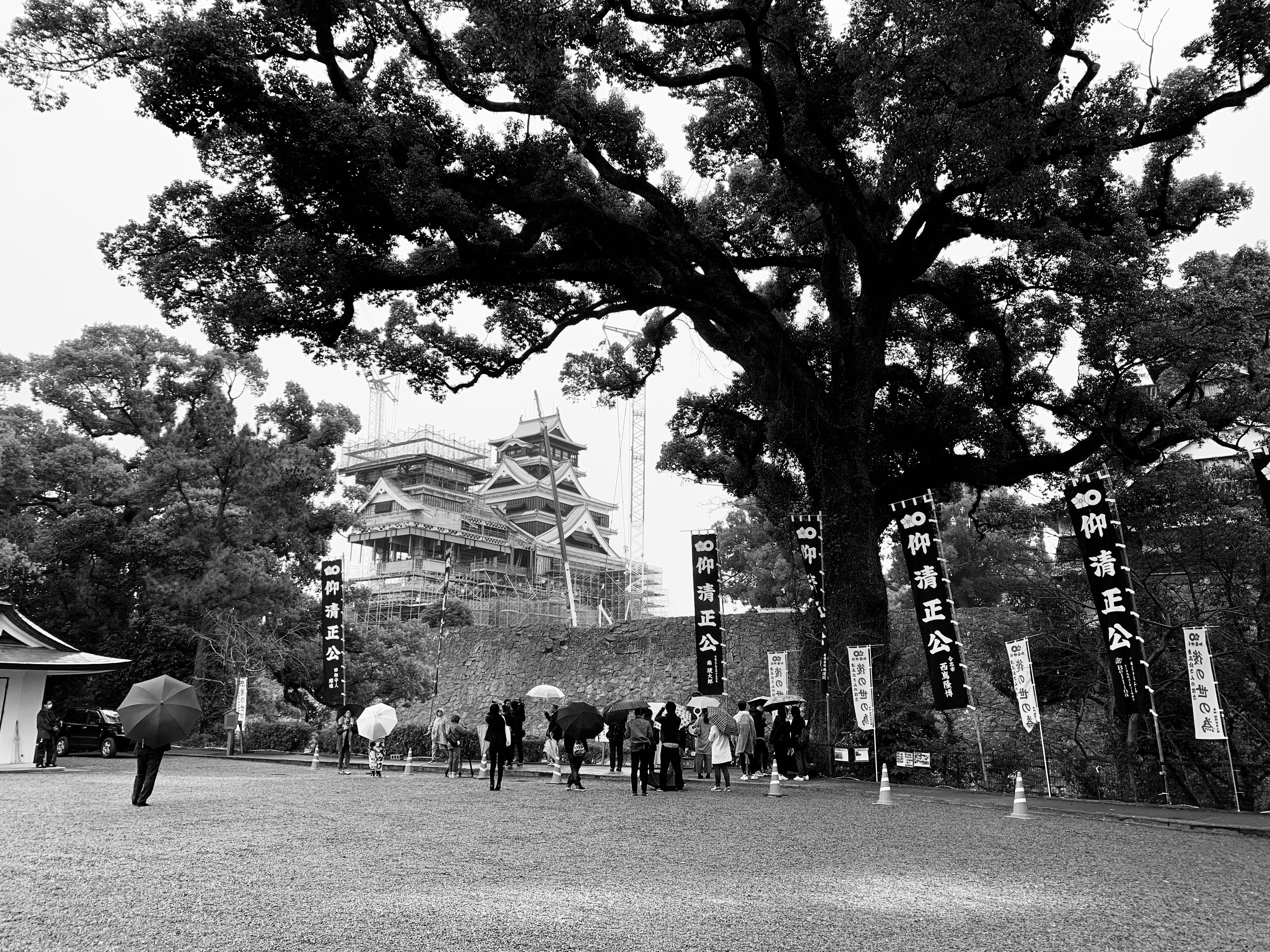 【国内】熊本城に行ってきました:復興城主と観音様
