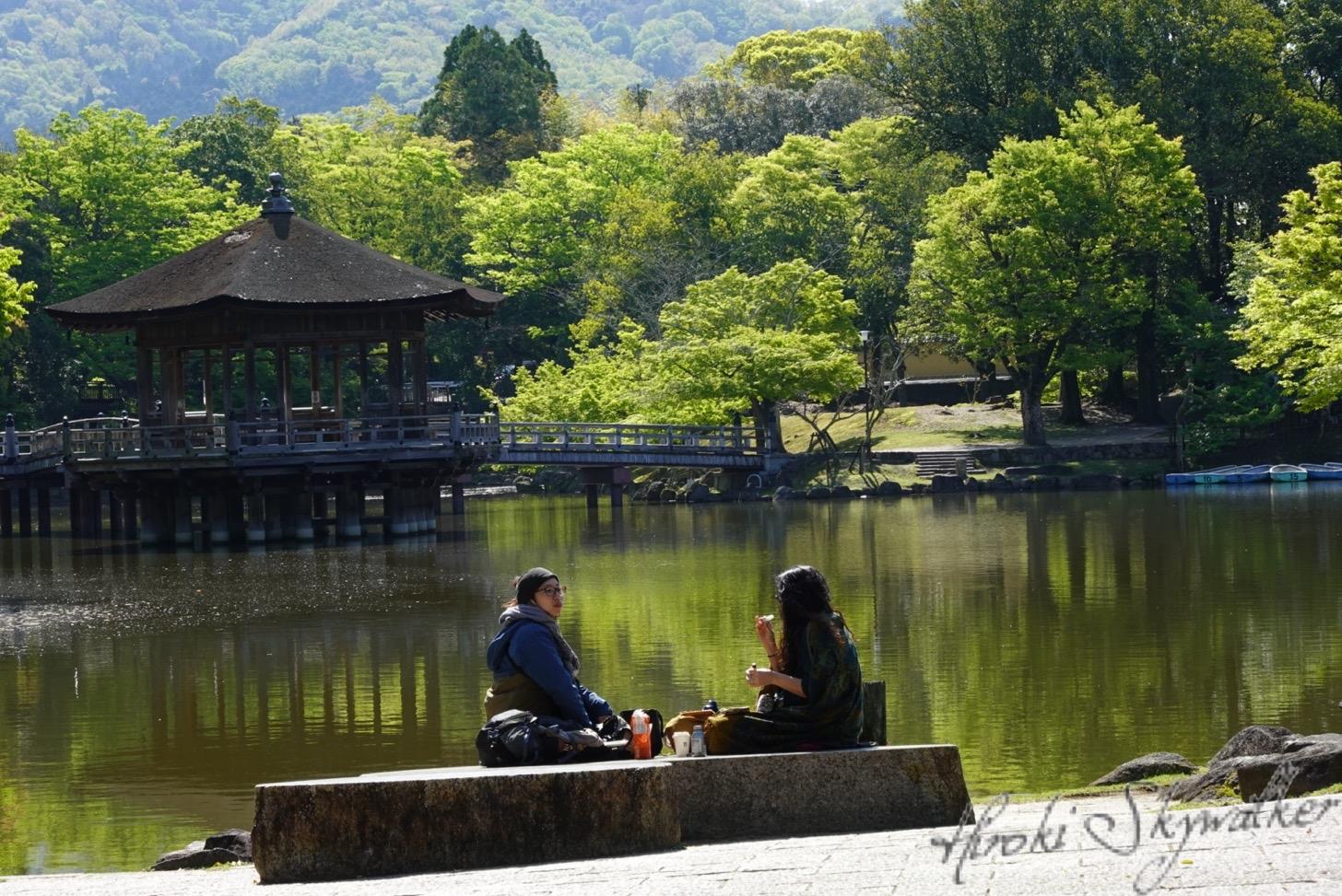 【国内】久々の奈良:奈良ならではのお食事最後は振り出しに戻る