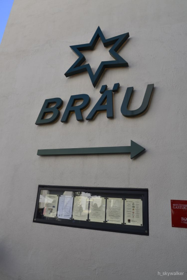 【海外】仕事も遊びもウイーン・ウイーンシチュエーション:ザルツブルグに日帰りで ファの巻
