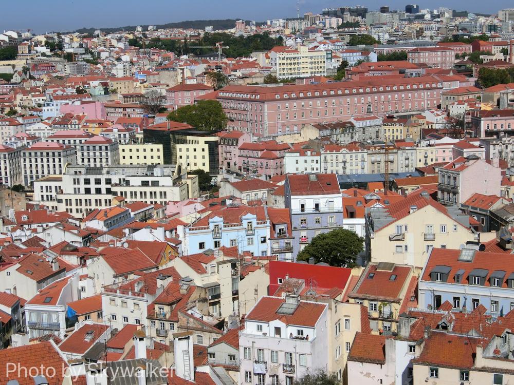 【海外】3度目のリスボンなのだ。:泥棒市でほーん当のツインホーンに聞き惚れる